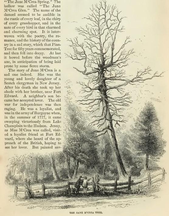 9--Jane McCrea Tree.jpg