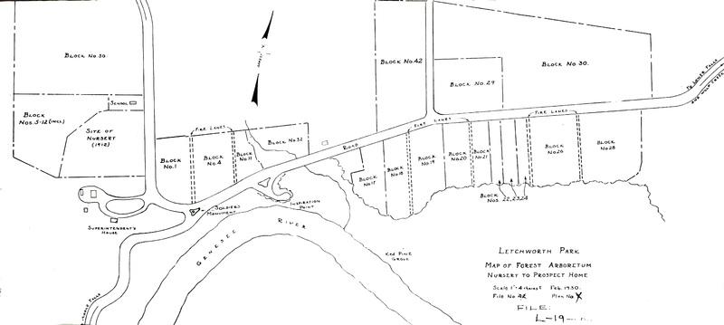 Letchworth-Arboretum-1.jpg