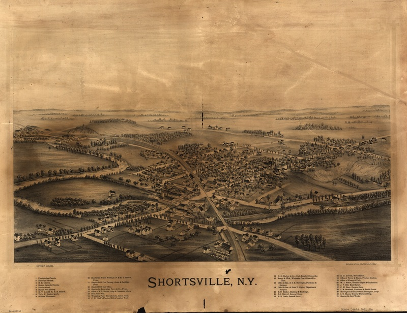 Shortsville--medium.jpg