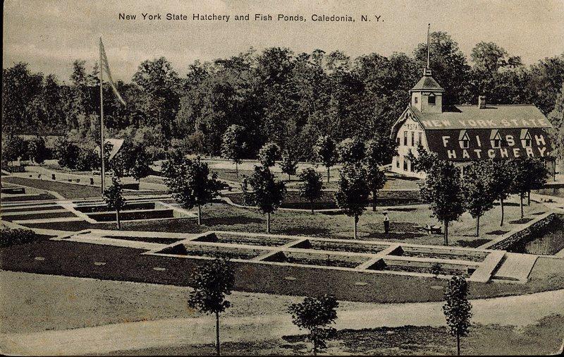 Hatchery 1909--front.jpg