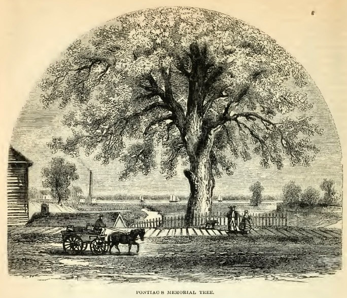 6--Pontiacs Memorial Tree.jpg