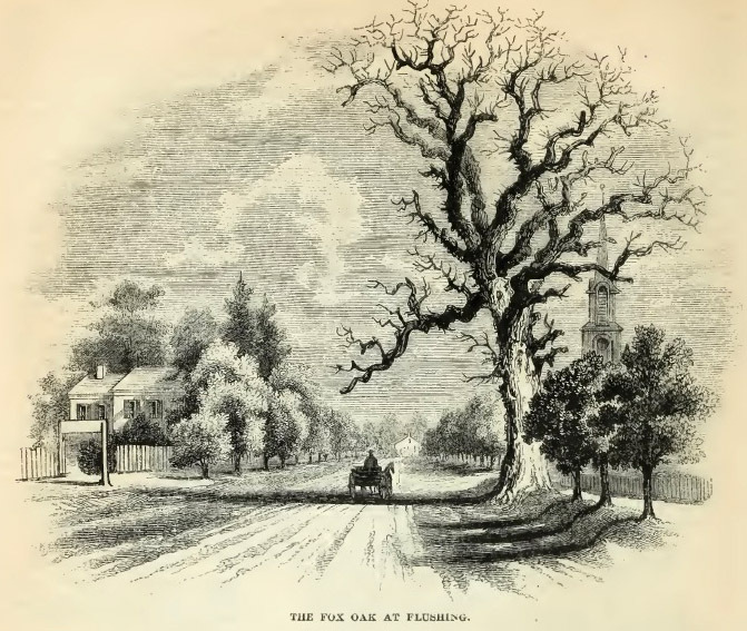 18--Fox Oak at Flushing.jpg