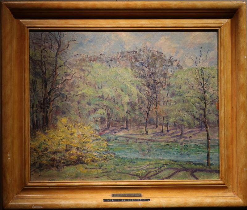 AbernathyInez - Spring in Central Park.JPG