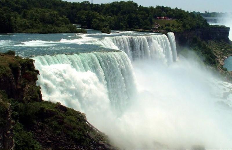 Niagara Dry.1.jpg