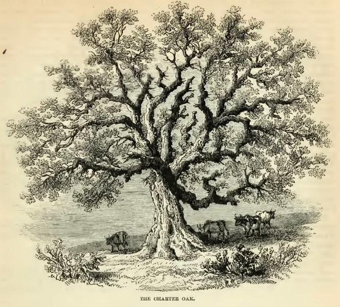 2--Charter Oak.jpg
