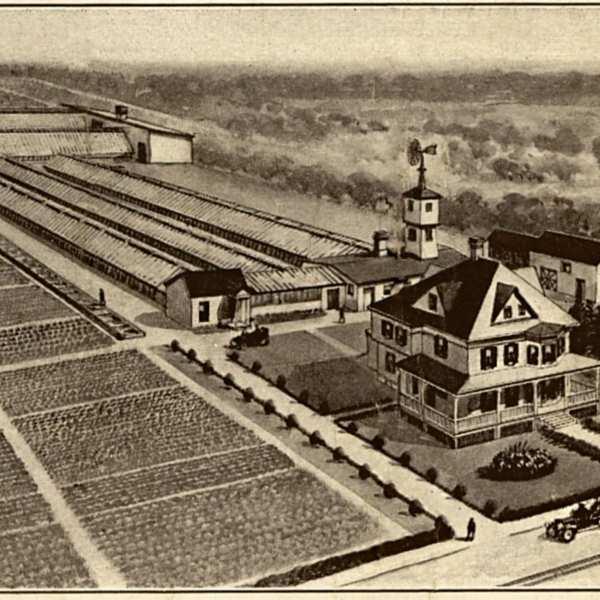 Charles Lenker's Property.jpg