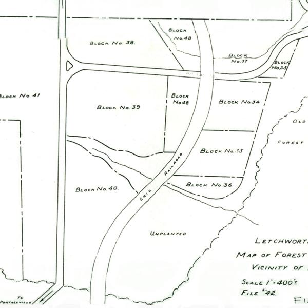 Letchworth-Arboretum-2.jpg