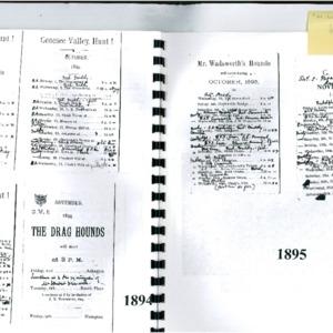 Diary-Fitzhugh.pdf