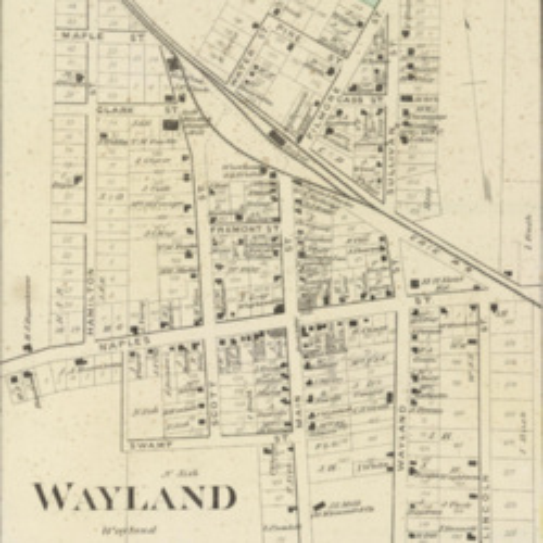 Wayland, NY (1873).jpg