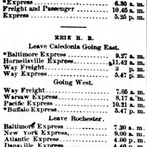 Caledonia Timetable 1878.jpg