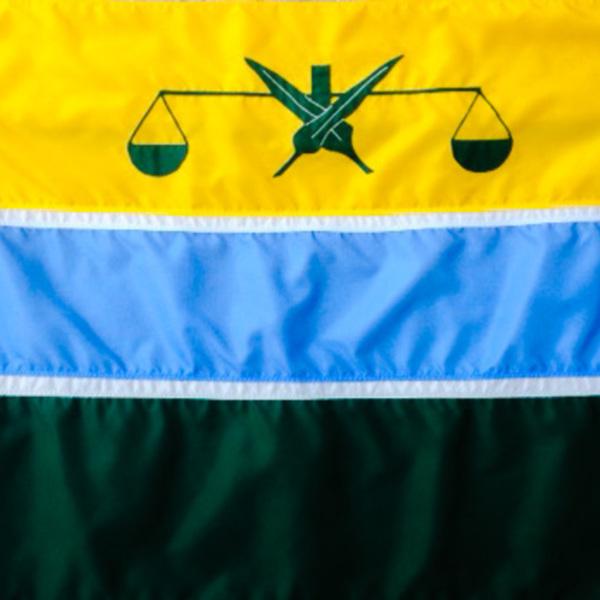 LivCo Flag.jpg