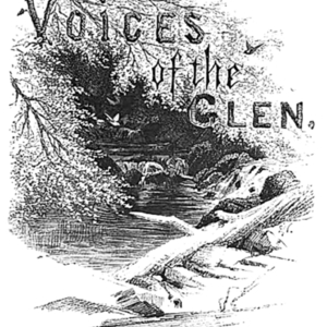 Voices of the Glen.jpg
