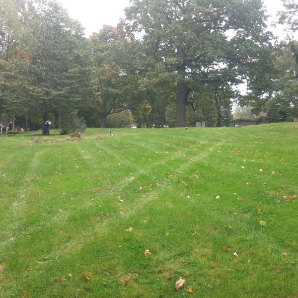 Mt. Hope Cemetery - Rochester State Hospital Plot