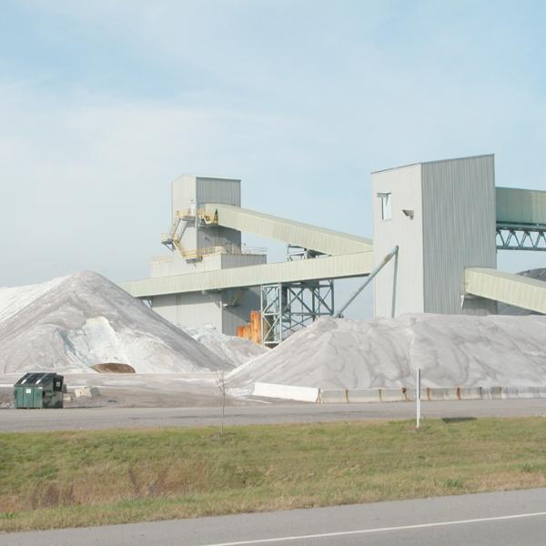 American Rock Salt.jpg