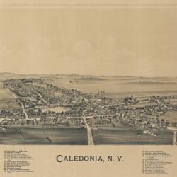 Bird's-Eye View of Caledonia, NY, 1892