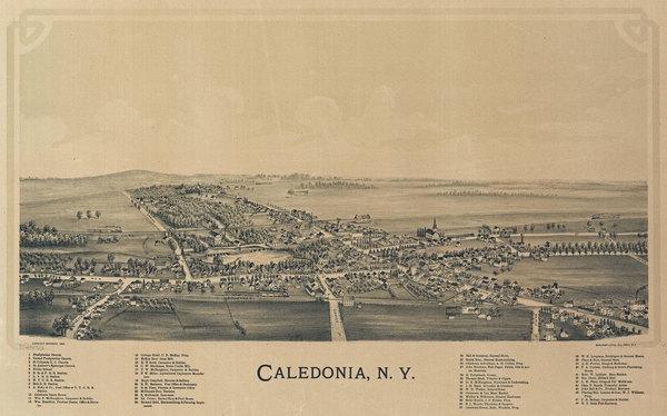 Caledonia-Aerial--small.jpg